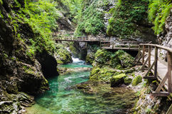 Vintgar Gorge, Slovenia Stock Photography