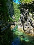 Vintgar Gorge in Slovenia Stock Photography