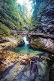 Vintgar Gorge Slovenia Royalty Free Stock Photography