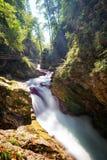 Vintgar Gorge Slovenia Royalty Free Stock Photo