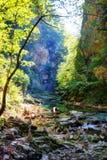 Vintgar Gorge Slovenia Stock Images
