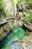Vintgar Gorge, Slovenia Stock Image