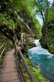 Vintgar gorge and wood path in Slovenia Stock Photo