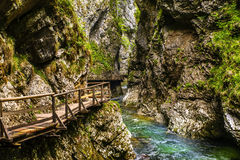 Vintgar gorge. And wooden path,Bled,Slovenia Royalty Free Stock Photos