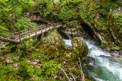 Vintgar gorge Stock Image