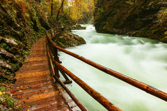Vintgar gorge and wooden path near Bled Royalty Free Stock Photos