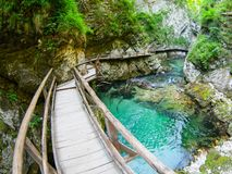 Vintgar Gorge. With wooden path and pure blue water ,Bled, Slovenia Royalty Free Stock Photography