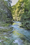 Vintgar gorge, wooden path and river Radovna. Bled, Slovenia. Royalty Free Stock Images