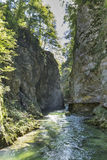 Vintgar gorge, wooden path and river Radovna. Bled, Slovenia. Stock Images