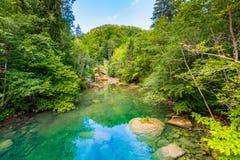 Vintgar klyftavattenfall i Slovenien, Triglav nationalpark Ren sötvatten i härliga turist- banor för natur och för skog near wa fotografering för bildbyråer