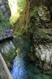 Vintgar Schlucht Verlaufenes Slowenien Stockfotografie
