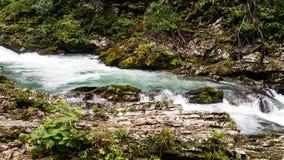 Vintgar Slowenien Stockfoto