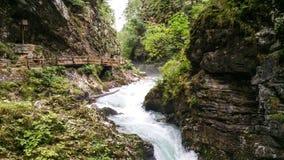 Vintgar Slowenien Lizenzfreies Stockbild