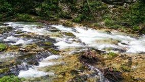 Vintgar Slowenien Lizenzfreie Stockfotografie