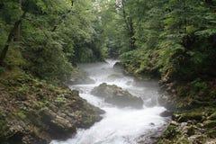 vintgar vattenfall Royaltyfri Foto