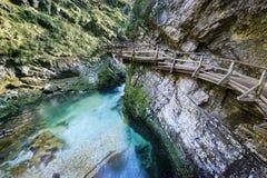 Vintgar vattenfall och kanjon, Slovenien royaltyfri fotografi
