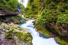 Vintgar wąwóz, Slovenia Rzeka blisko Krwawiącego jeziora z drewnianymi turystycznymi ścieżkami, mostami nad rzeka i siklawami, Wy fotografia royalty free
