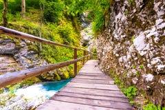 Vintgar wąwóz, Slovenia Rzeka blisko Krwawiącego jeziora z drewnianymi turystycznymi ścieżkami, mostami nad rzeka i siklawami, Wy obraz royalty free