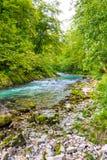 Vintgar wąwóz, Slovenia Rzeka blisko Krwawiącego jeziora z drewnianymi turystycznymi ścieżkami, mostami nad rzeka i siklawami, Wy zdjęcia stock