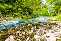 Vintgar wąwóz, Slovenia Rzeka blisko Krwawiącego jeziora z drewnianymi turystycznymi ścieżkami, mostami nad rzeka i siklawami, Wy obrazy stock