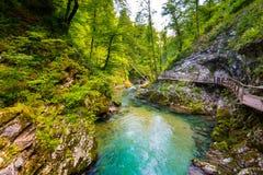 Vintgar wąwóz, Slovenia Rzeka blisko Krwawiącego jeziora z drewnianymi turystycznymi ścieżkami, mostami nad rzeka i siklawami, Wy fotografia stock