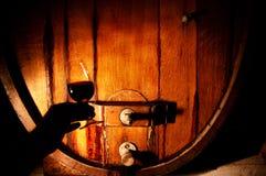 Vintillverkareexponeringsglas av vin Arkivbilder