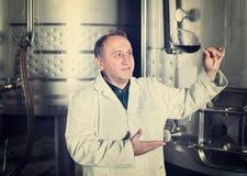 Vintillverkaren kontrollerar kvalitet av vin Royaltyfri Fotografi