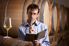Vintner in cellar analyzing white wine. Winemaker in cellar analyzing a glass of white wine and taking notes in notebook during wine tasting Stock Photography