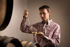 Vintner che preleva campione di vino bianco in cantina. Fotografie Stock Libere da Diritti