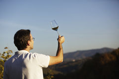 Vintner checking wine. Male winemaker holding up glass of wine for checking consistency of his creation with landscape of hills and blue sky in background Royalty Free Stock Photos