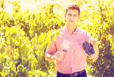 Vintner with glass of wine. Portrait of male vintner with glass of wine in summer Royalty Free Stock Photos