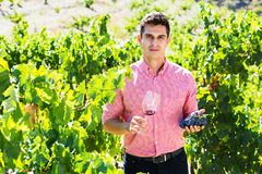 Vintner with glass of wine. Portrait of male vintner with glass of wine in summer Royalty Free Stock Image