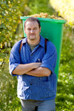 Vintner During The Harvest Stock Photo