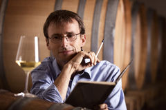 Vintner looking at glass of white wine in cellar. Smiling winemaker in cellar looking satisfied at a glass of white wine during wine tasting, with notebook and Stock Images