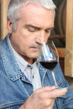 Vintner smelling glass of red wine Stock Photos