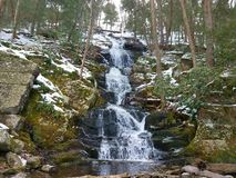 Vintrig skogsbevuxen vattenfall royaltyfria bilder