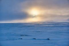 Vintrigt landskap i dimmiga villkor Royaltyfria Foton