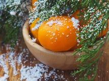 Vintrigt landskaplandskap med sörjer täckt snö för trädfilial, snöar landskapbakgrund för den Retro julkortet, vinterträd i W Royaltyfri Foto
