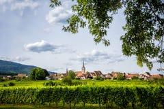 Vinväg i Alsace vinlandskap royaltyfri fotografi