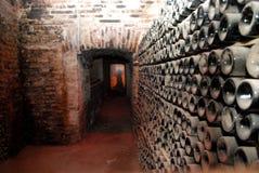 vinyard Obraz Stock