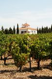 Vinyard and farmhouse, Montilla. View across a Spanish vineyard with a farmhouse to the rear, Montilla, Cordoba Province, Andalusia, Spain, Western Europe stock images