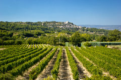 Vinyards and Bonnieux, Provence Stock Photos