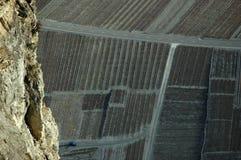 Vinyards nella valle del Rhone Fotografia Stock Libera da Diritti