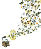 Vinyl gramophone and butterflies illustration Stock Photo
