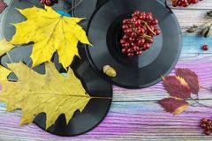 Vinyl records are on the table among the yellow leaves. Royalty Free Stock Photos