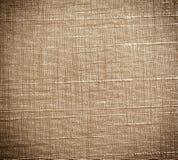 Vinyl Wallpaper wall. Stock Photo