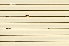 Vinylabstellgleis-Schaden von einem Hailstorm Lizenzfreie Stockfotos