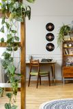 Vinyls above desk with typewriter in stylish vintage apartment stock images