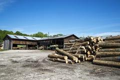 Vio los registros, árboles, serrería, madera de construcción Fotografía de archivo libre de regalías