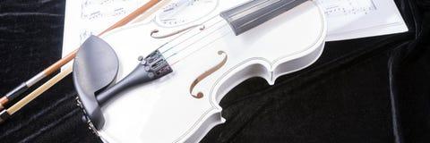 Violín blanco y negro con las notas de la música Fotografía de archivo libre de regalías